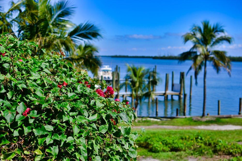 Cabbage Key Sanibel Island.jpeg