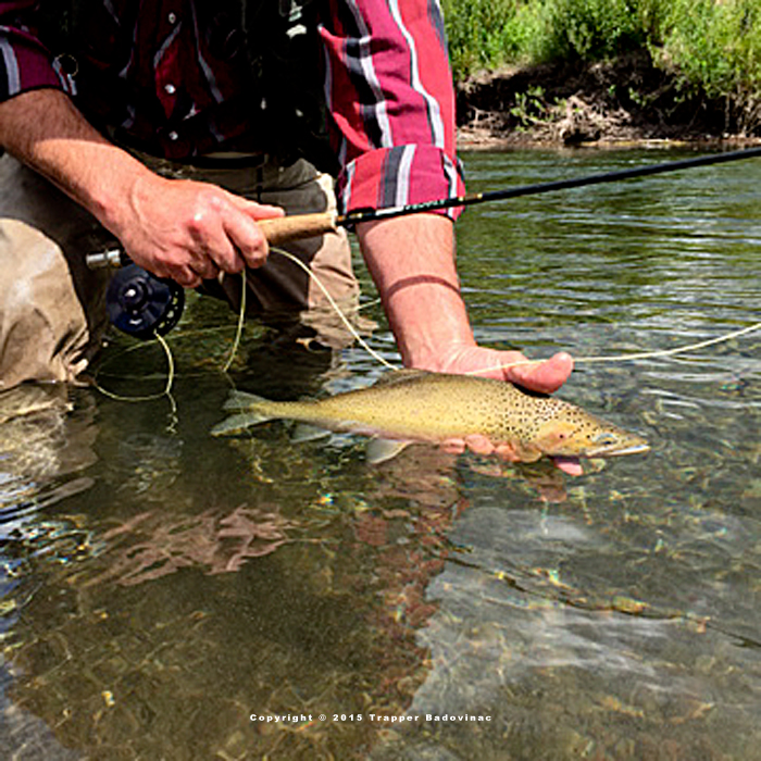 Bob Marshall Fly Fishing