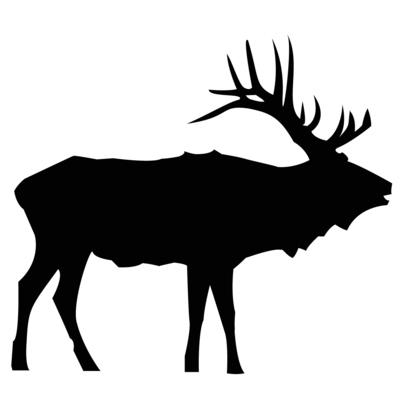 Elk Hunts