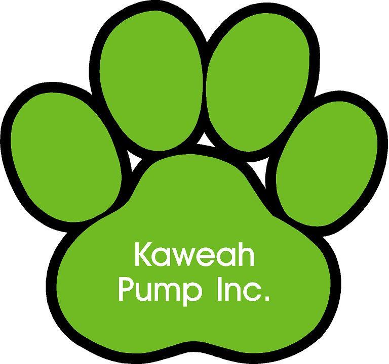 Kaweah Pump[1].jpg