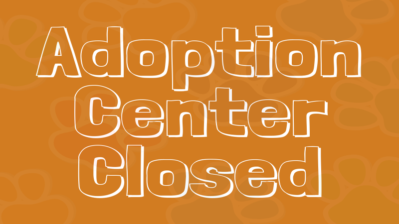 Adoption Center Closed.png