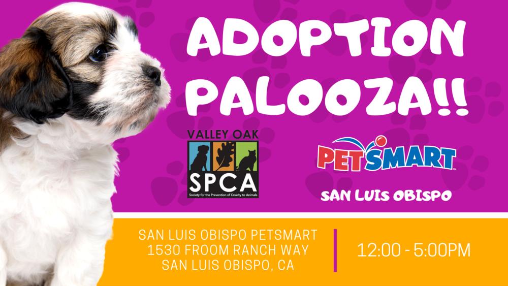 Adoption Palooza, SLO Petsmart.png
