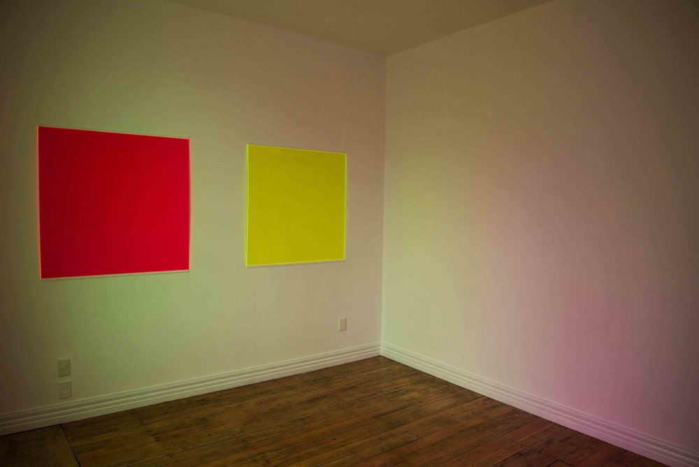 Fluorescence Installation view at Across the Road Gallery.