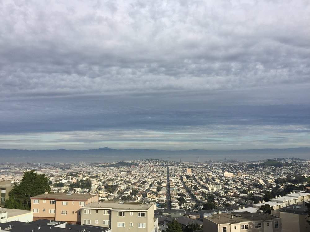 View from Sutro Tower.