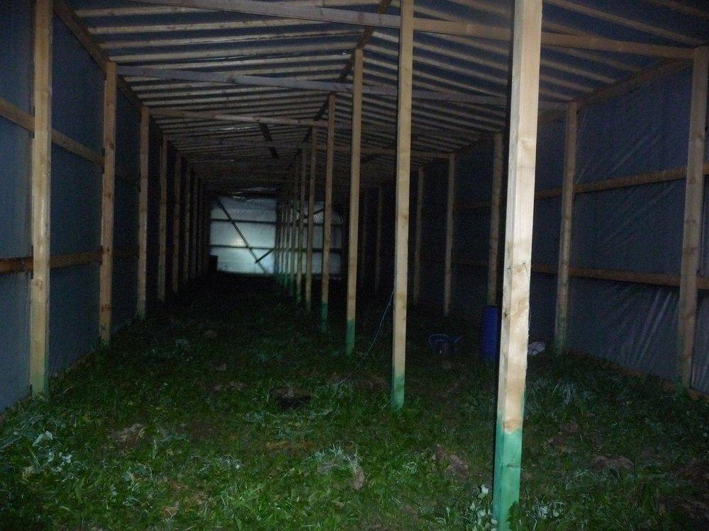 Siin kasvuhoones kasvasid veel paar päeva tagasi 55 kanepitaime eesmärgiga toota isiklikuks tarbeks ravikanepiõli.