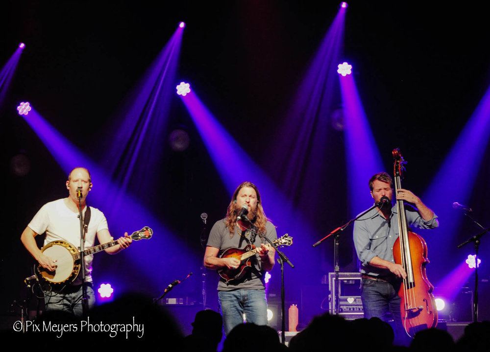 All photos by Dawne Meyers