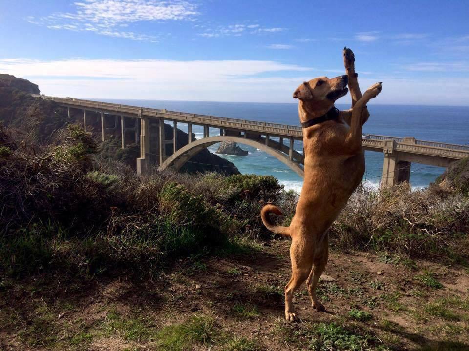 Jenny & The Bixby Bridge