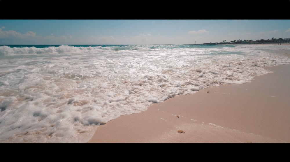 Sia Partners Cancun Beach.png
