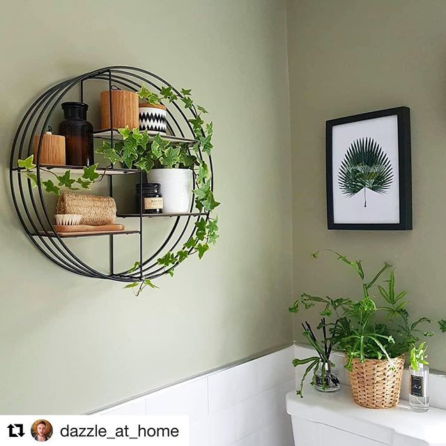Repost of the gorgeous @dazzle_at_home today who's got this G&F print up in the bathroom of his beautiful home. Darren has the most amazing botanical inspired interiors in his home, I'd thoroughly recommend you check out his feed for inspo. • #botanicalprint #botanicalprints #botanicillustration #botanicalgardens #botanicalillustration #botanicalillustrations #palmillustrations #palmillustration #teamgreen #palmleaf #palmprint #palmprints #botanicinspiration #botanicalinspiration #botanicinspo #botanicalinspo #bathroominspo #bathroominspiration #plantlife #plantlife🌱 #shelfie #shelfies #illustrator #illustration #plantillustration #plantillustrations #fellowsouthwoodmaven