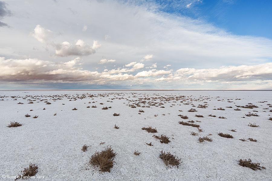 Meighan Desert