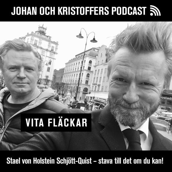 Kristoffer Schjött-Quist, tillsammans med Johan Staël von Holstein i ny podcast kring entreprenörskap.