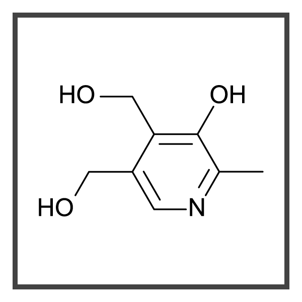 Pyridoxine Hydrochloride - optimized - border.png