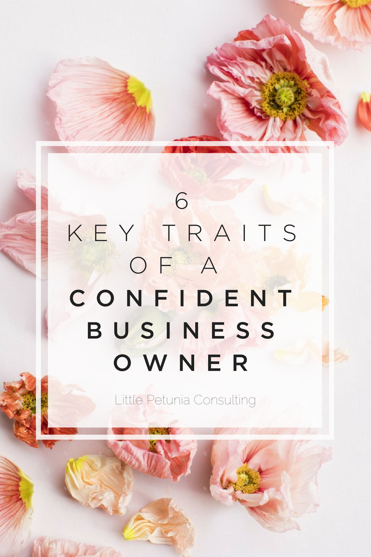 six key traits of a confident business owner little petunia consulting