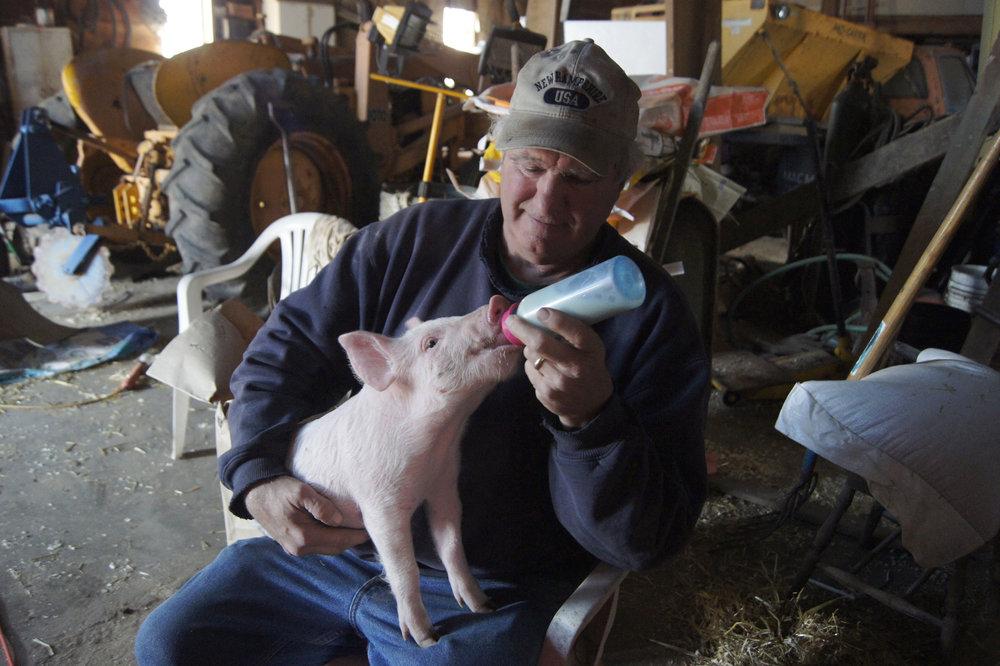 Fred's Pork_Bottle Feeding (lightened).jpg