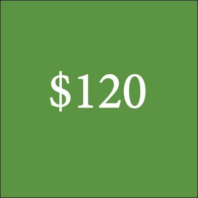 $120.jpg