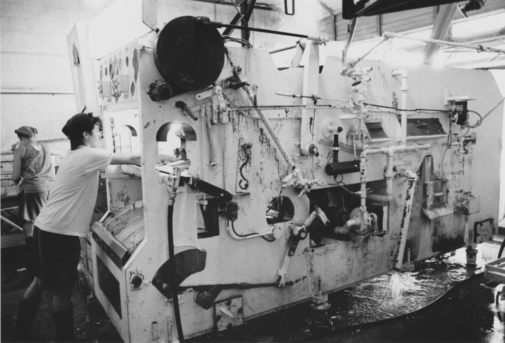 Bottle-washing at the original Genesis Juice cooperative, beginning with the old glass sterilizing machine, Big Bertha. Photo credit to Rain Magazine