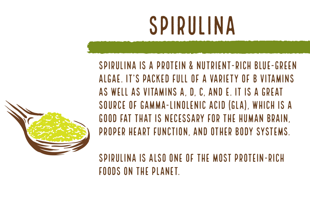 Fun fact: Spirulina boasts 65% protein vs beef which is made up of 22% protein.