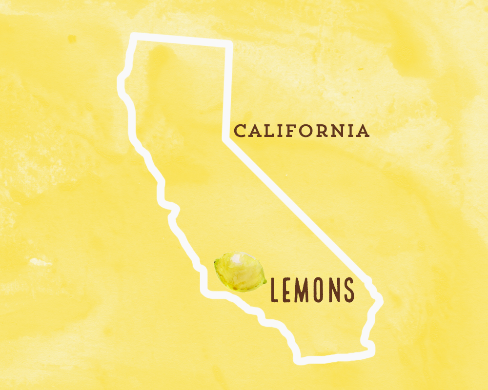 Find 3 lemons in every bottle of our Ginger Lemonade.