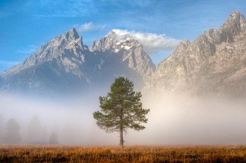 Landscape — Formatt Hitech USA