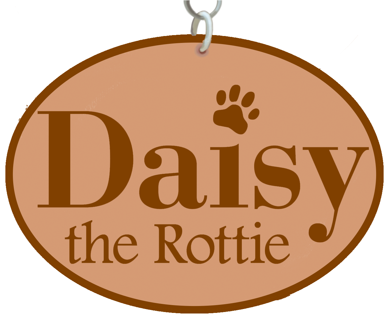 Daisy the Rottie
