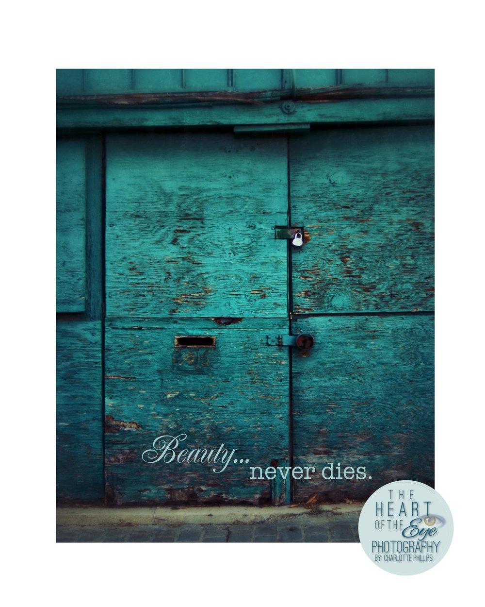 Old Weathered Turquoise Door, Birmingham Alabama