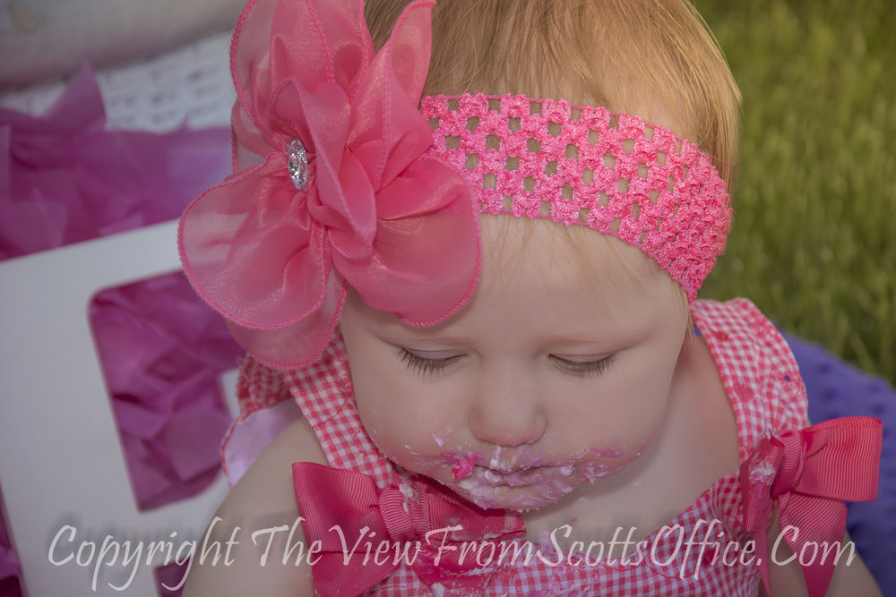 professional baby photography,photography websites,best photography websites,best photography websites,professional maternity photos,professional pregnancy pictures,professional maternity photographer,baby family photography