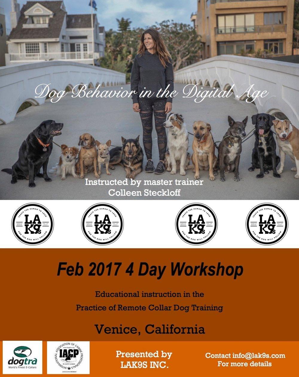 2017 e collar workshop dog behavior in the digital age for Dog daycare santa monica
