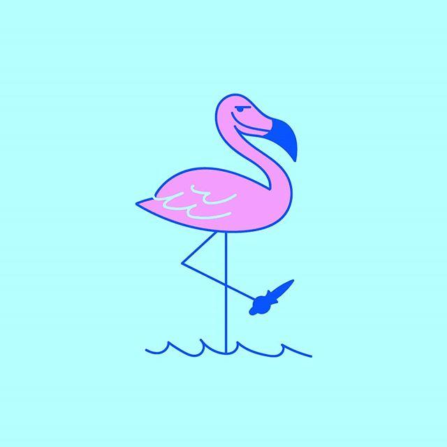 🔪 mess with flamingo you get a stabbingo 🔪