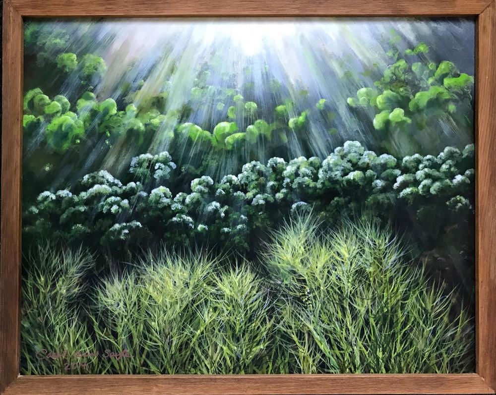 Carol Ann Sayle of Boggy Creek Farm.jpg