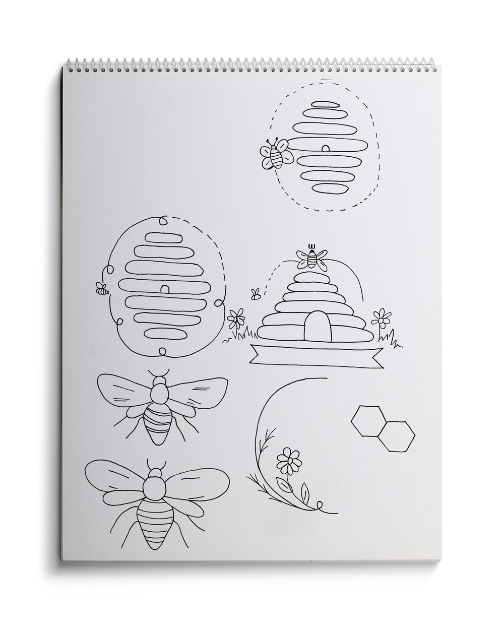 bee drawing.jpg
