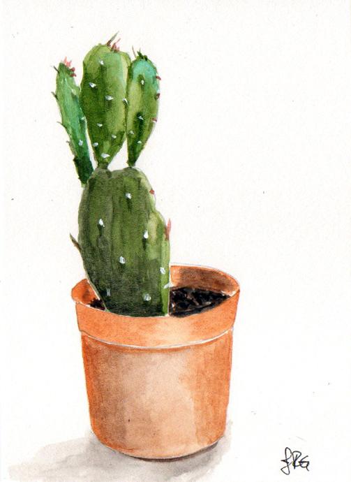 cactus_JRG_2.jpg