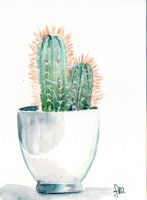 cactus_JRG_4.jpg