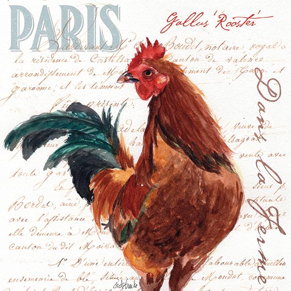 redstreake_danslaferme_rooster2.jpg