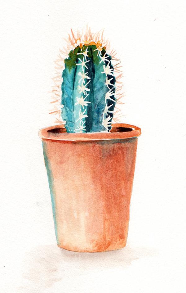 succulent6_lowres.jpg