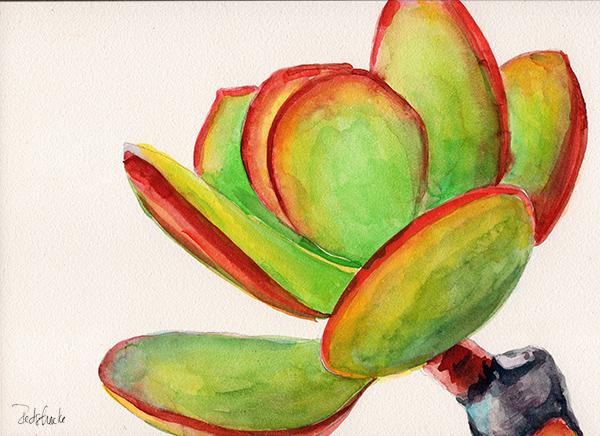 succulent7_lowres.jpg