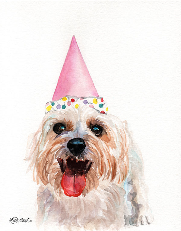dog_bdayhat_redstreake.jpg