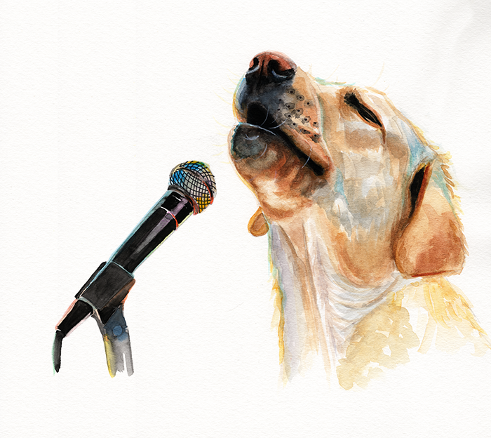 Doggie Idol