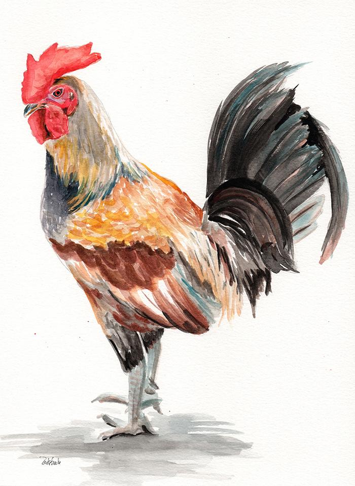 redstreake_rooster10.jpg