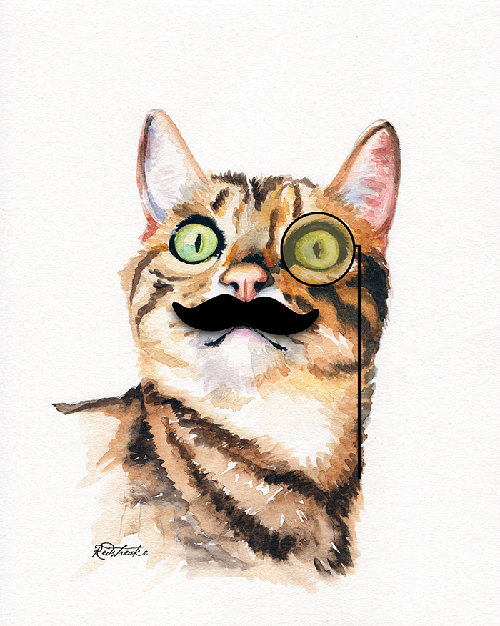cat_moustache_highres.jpg