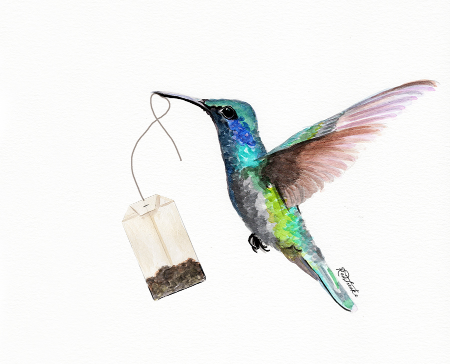 hummingbird_tea.jpg
