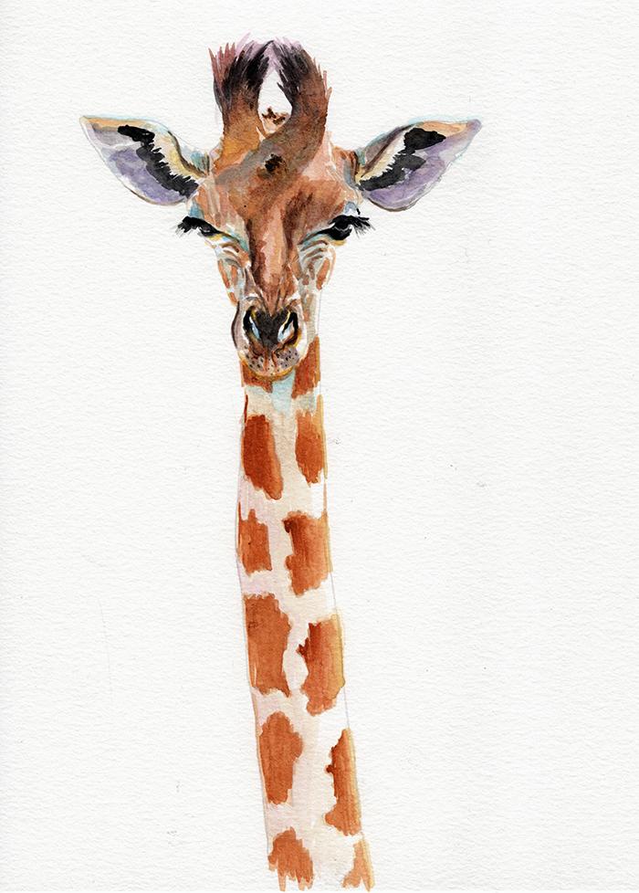 giraffe_longneck_lowres.png