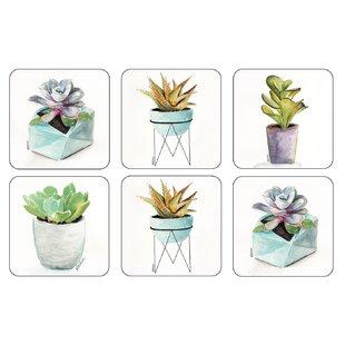 succulents-coaster-set-of-6.jpg