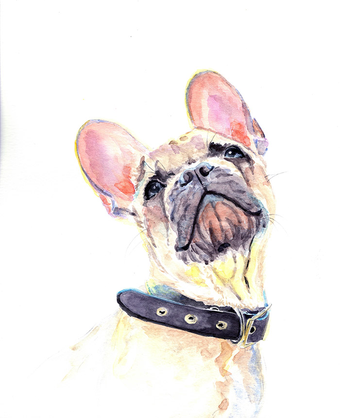 pinkishdog.jpg