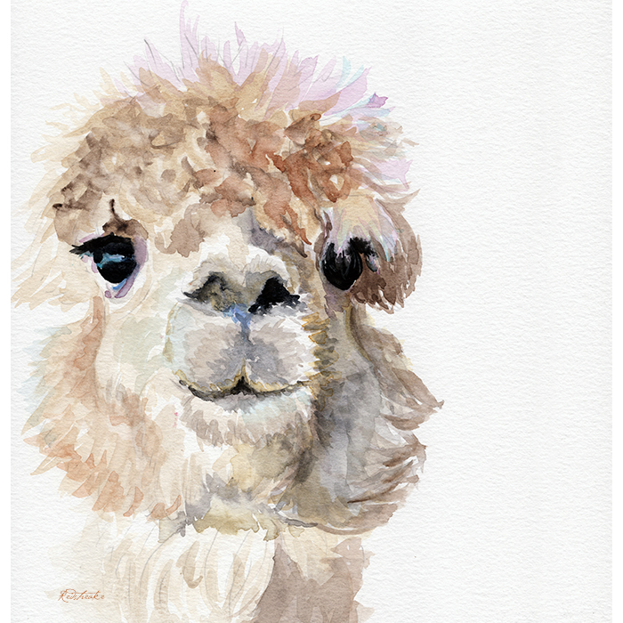 alpacaportrait_redstreake.jpg