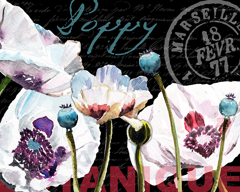 lavenderpoppies_black_2018_collage.png