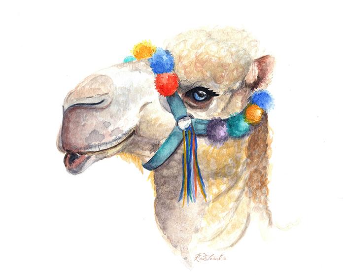camel3_redstreake.jpg