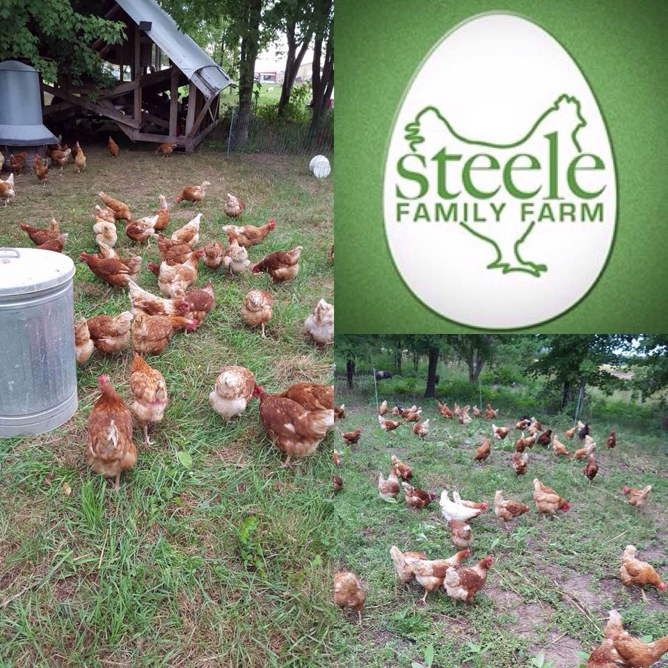 Steele Family Farm  5141 128th Ave Holland, Michigan @SteeleFamilyFarm Call (616) 836-3402  Show Notes: coming soon   The Steele's have all the legal exemptions required by law to process their chickens their way, so WHY does Market Master deny them? Hmmm? To Help the Steele's get into the Holland Farmers Market.. Please call  Candy Todd  • Market Master info@hollandfarmersmarket.com • 616.355.1138