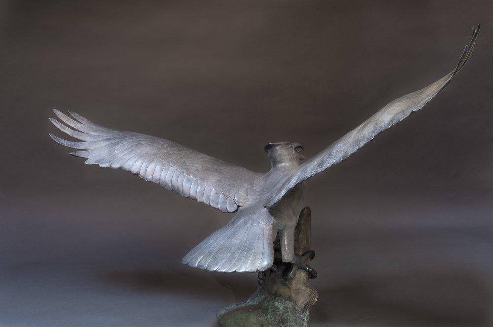 Ascending Osprey