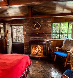 sedona-cabin-owl.jpg