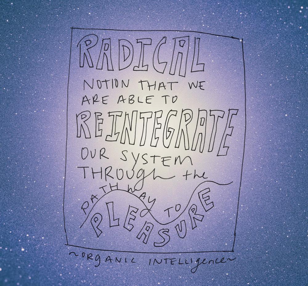 radical notion pleasure4.jpg